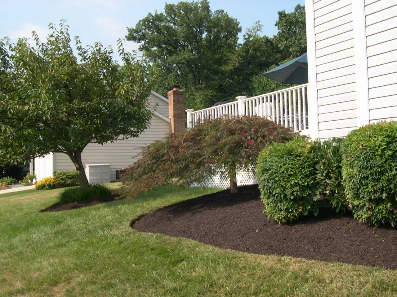 Pruning with Mulch Masters after example 3