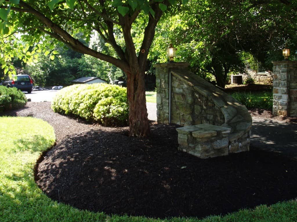 Pruning with Mulch Masters after example 4