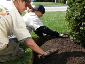 Mulch Installation via Mulch Masters